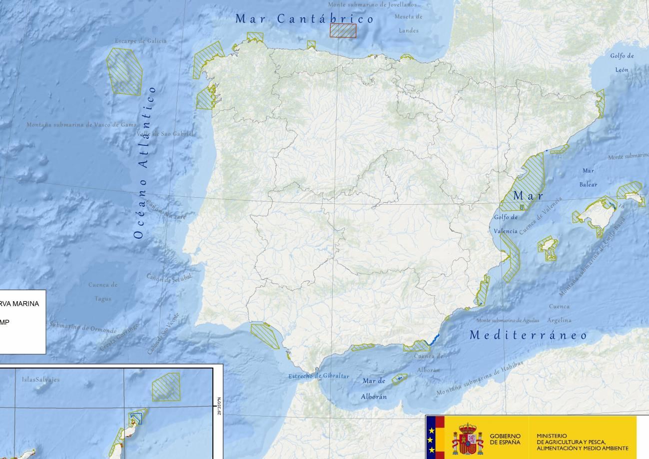 AMP en España