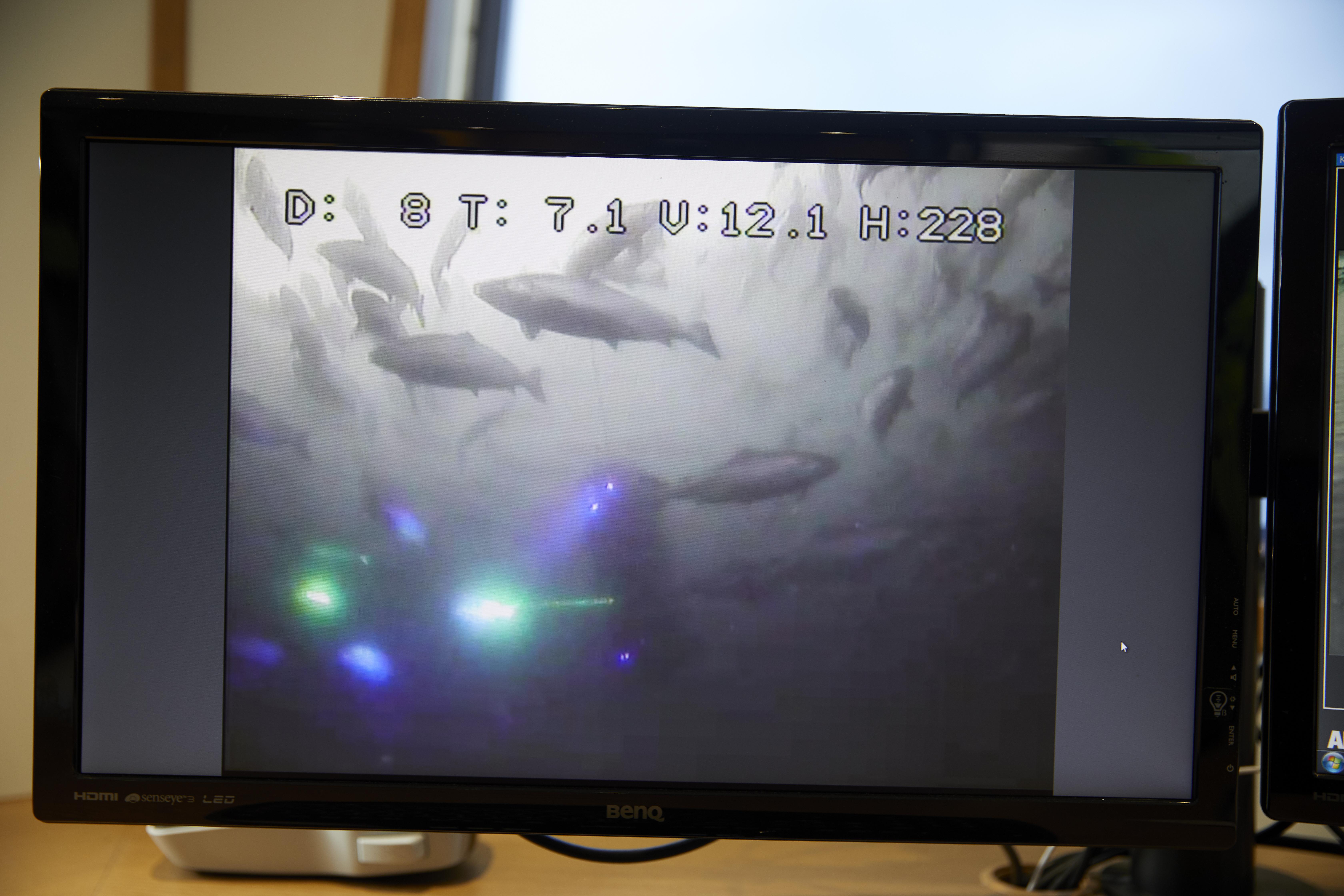 Imágenes de los disparos de rayos láser