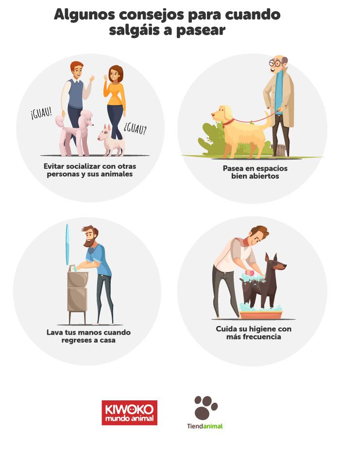 Recomendaciones paseo perros