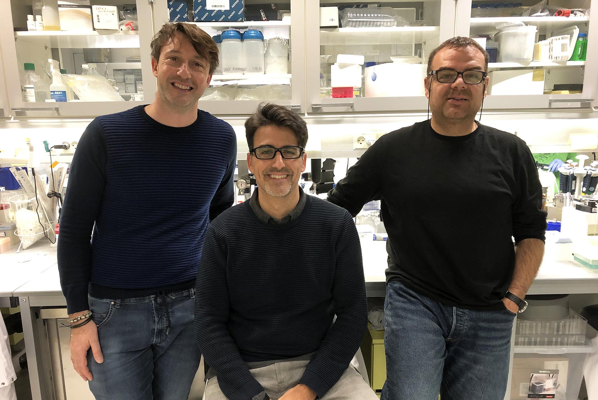 Stefano Stella, Rafael Molina y Guillemo Montoya
